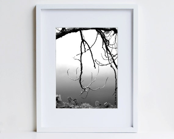 Zen Decor, Black and White Photo, Meditative Image, Branch Silhouette