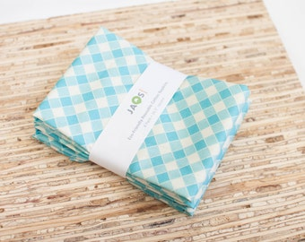 Large Cloth Napkins - Set of 4 - (N1848) - Aqua Gingham Modern Reusable Fabric Napkins