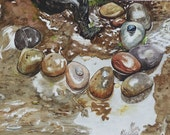 River Rocks Watercolor Painting
