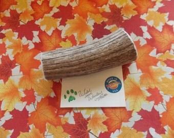 Jumbo Elk Antler Dog Chew (Lot 6074)
