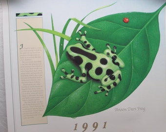 Afrin Pharmacy Calendar Poster 1991, Pharmacy Advertising Old/New, Herbs, Frogs