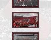 A Scarlet and Gray Saturday 8x10 or 11x14 Ohio State Buckeyes Ohio Stadium Columbus Ohio Art Print - by Kenneth Krolikowski - Free Shipping
