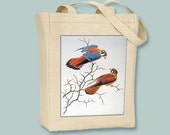 American Kestrel Bird illustration BLACK or NATURAL Canvas Tote -- Selection of Sizes available