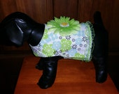 Sweet little dog outfit light blues and greens with removable flower