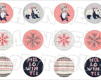 Made to Match Gymboree M2MG Polar Pink bottlecap image sheet