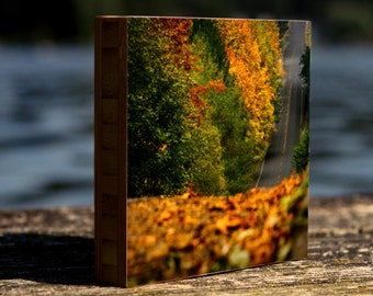 Fall Cruising, bamboo block,  wall art, decor, fall, autumn, leaves, harvest, photography, print, wood, landscape, seasons, seattle,