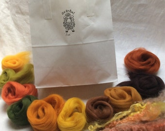 Needlefelt kit. Includes washed British fleece, 10 shades of Merino tops,sponge,wool curls, 2 needles and instructions. Fall colourway