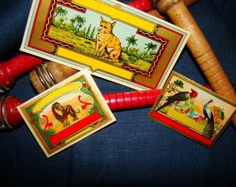 3 Incredible Antique Dye Textile Labels Gilded Lithographs Birds Cat Lion