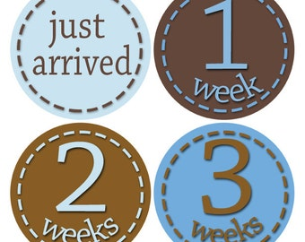 Combo Savings, Blue and Brown Baby Stickers, Infant Monthly Stickers, Month to Month, NB -24 Months (49A)