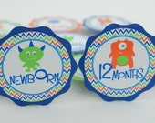 Monster 1st Year Photo Banner, Monthly Banner, 1st Birthday Photo Banner, Monster Birthday Party, Royal Blue, Orange and Lime Green, c-1210