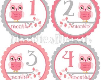 Baby Girl Monthly Stickers -INSTANT DOWNLOAD - DIY Printable pdf Milestone Growth Stickers Pink Gray Owls (Barbie)