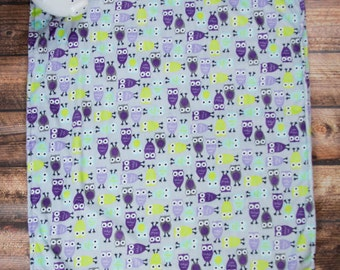 Purple Owls Minky Baby Blanket
