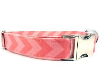 Hot Pink Chevron Dog Collar