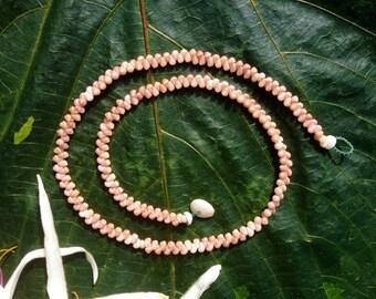 "Shell Necklace Hawaiian Kahelelani Shells-18""Eco Friendly Collected Ocean Gems Endemic To Hawaii- Herringbone Necklace- Hawaii Shell Jewelry"