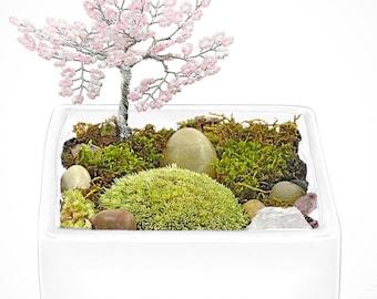 ZEN TREE GARDEN - zen garden, air plant terrarium, feng shui terrarium, buddha, terrarium, terranium, buddha, moss terrariums, gifts for him