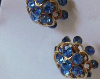 blue rhinestone post  earrings