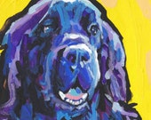 "Newfoundland dog portrait print of pop art painting bright colors 8x8"" LEA"