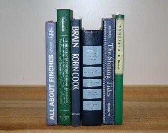Modern Vintage Book Collection