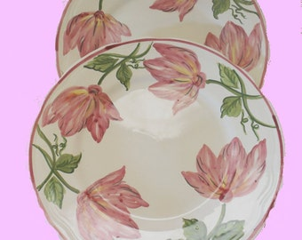 Very Nice Set of 2 Dinner plates, Made in Portugal, Free Shipping
