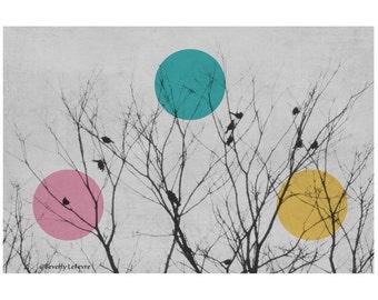 nature, birds, trees, winter, modern, art, fine art photography