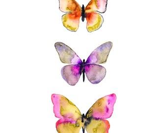 Watercolor Butterfly Art Print.  ButterflyIllustration.  Watercolor Butterflies.