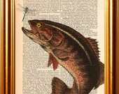 Bass Fish Fishing Bass with fly print on repurposed Vintage 1861 Dictionary Page mixed media art