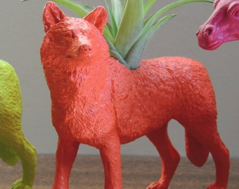 Poppy Wolf planter / animal planter / air plants / woodland animal
