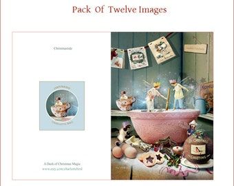 Set of 12   Christmas cards by Charlotte Bird....