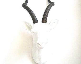 SALE! WHITE-NATURAL Large Antelope Faux Taxidermy wall mount hanging home decor: Anya the Antelope // white natural-looking horns / office