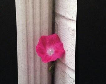 Pink Flower Flat Note Kard