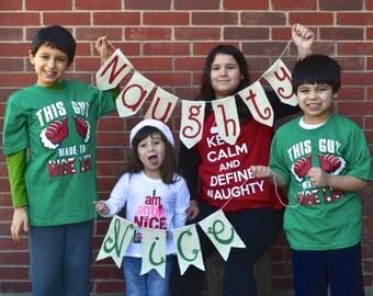 Christmas Banner Photo Prop