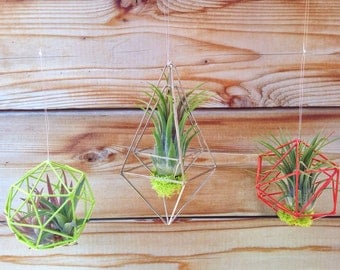 Wire Air Plant Nests or Holiday Ornaments - A Unique Holiday or Birthday Gift