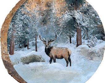 Deer in Winter Snow - DAE020