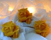 Owl Candle Set