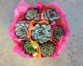 Succulent Gift Basket
