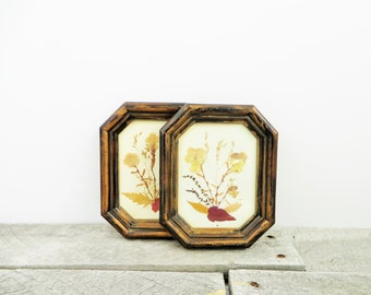 Vintage Art - Pressed Flowers in Wood Frames - Elegant Unique Shabby Chic