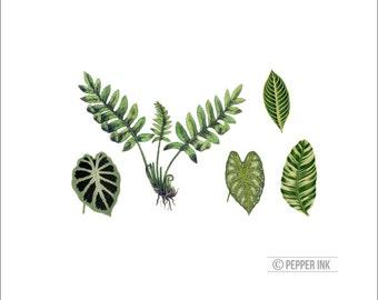 vintage botanical leaf and ferns -5 temporary tattoos from vintage illustrations - leaf tattoo, fern tattoo, nature tattoo, vintage tattoo
