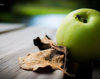 Green Apple Photograph, Nature, Fruit, Kitchen Art, Traverse City, Michigan Photo