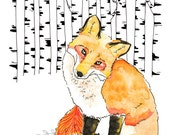 Fox in birch forest watercolour ink pen and pencil illustration art print