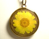 Real Pressed English Yellow Daisy and Tree of Life Reversible Bronze Necklace