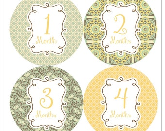 Willow Frames Baby Monthly Stickers