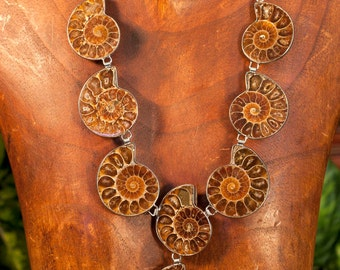 Ancient Ammonite fossil Necklace