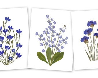 Set of 6 Pressed Flower Cards - Blue Flowers - Blank notecards - #044