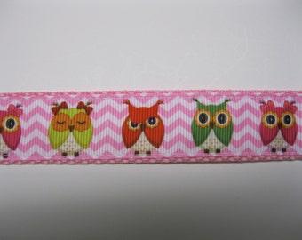 Famous Owls