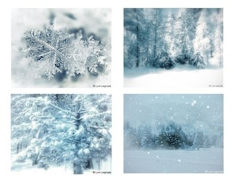 Winter Photography Set, Christmas Photos -  4 photos four blue white Christmas set of 4 winter images woods snow trees winter print set
