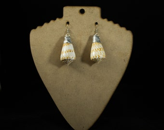 FREE SHIPPING  Real Shell Soldered Earrings