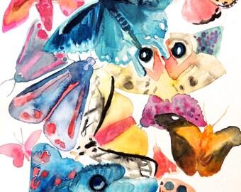 Moth # 2 PRINT 8x10