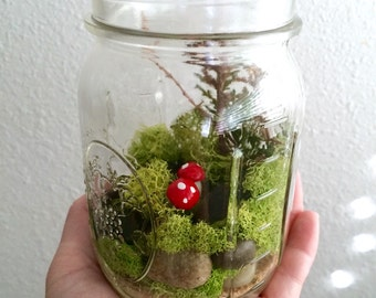 Woodland Forest Mason Jar Terrarium Kit (Airplant Included!)