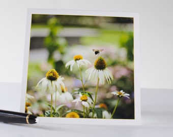 """5X5 Blank note card with Bumble Bee """"Lift Off' from White Coneflower original photograph"""