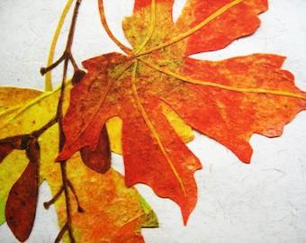Collage MAPLE LEAF Fine Art Print Maple Tree Woodland Autumn Rustic Home Decor